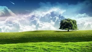 samotne_drzewo_i_chmury-1192503